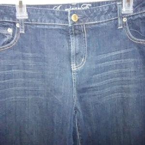 American Eagle Jeans - American Eagle Plus size jeans.